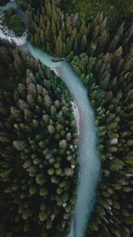 俯拍的森林路