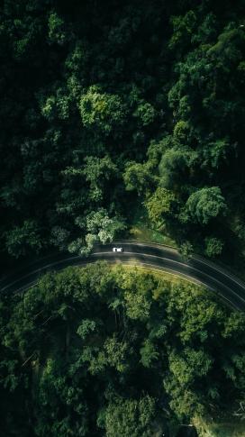 高空俯拍的半圆绿色公路