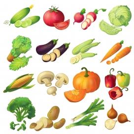 丰富的卡通蔬菜素材下载