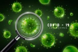 用放大镜放大冠状病毒细胞