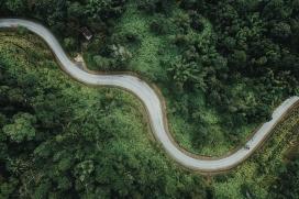 航空森林公路