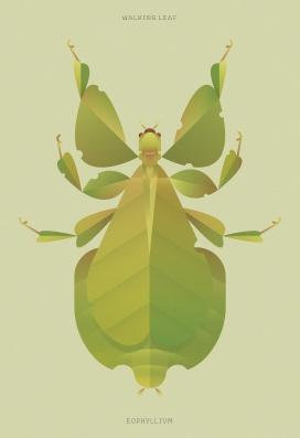 昆虫世界收藏插画