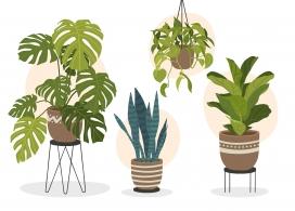 https://www.2008php.com/卡通吊篮植物盆栽素材下载