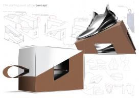 概念性可持续鞋盒