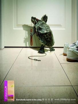 国外动物人性化创意作品展示